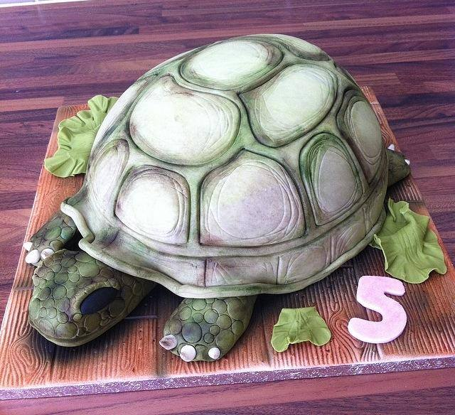 Tortoise Cake Licky Lips Cakes Liverpool
